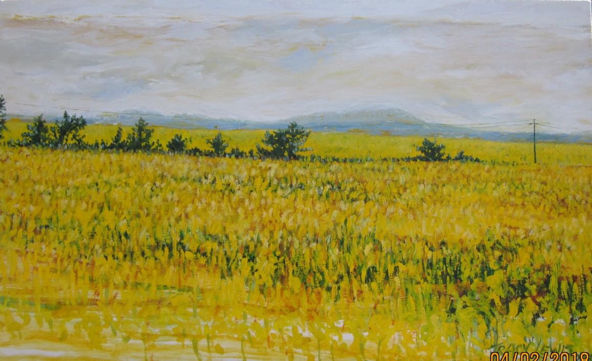 Landscape in yellow